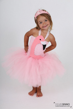 Costume de flamand rose
