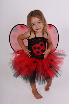 Costume de Coccinelle version 1