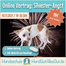 Online Vortrag: Silvesterangst - Training & Management