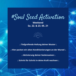 SOUL SEED ACTIVATION