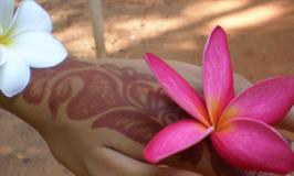 Massage Lomi