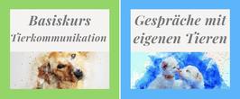 """Kombiangebot Basiskurs und Kurs """"Gespräche mit eigenen Tieren"""""""