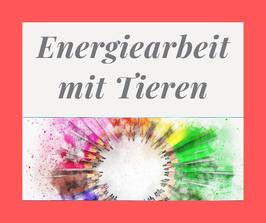 Onlinekurs Energiearbeit mit Tieren