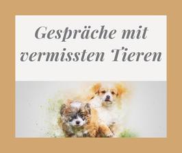 Onlinekurs Vermisste Tiere