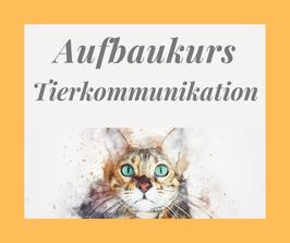 Aufbaukurs Tierkommunikation