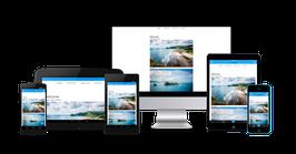 Homepage / Webshop einrichten