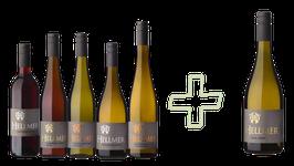 Basis- Weinpaket