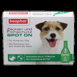 Zecken-/Flohschutz kleine Hunde