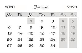 NEU**Minikalender 2020  in deutsch  incl. bundeseinheitliche Feiertage