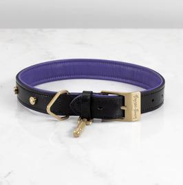 Buster + Punch Hundehalsband in 5 Größen und 2 Farbkombinationen