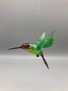 HUMMINGBIRD IN BORDEAUX/GREEN/BORDEAUX