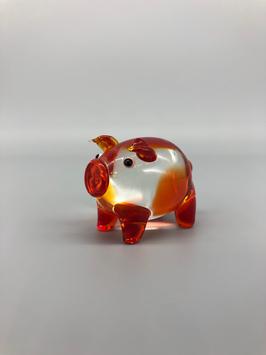 red piglet