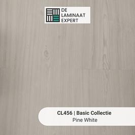 CL456 Basic Pine White (sample)