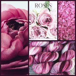 Boston - Rose Garden