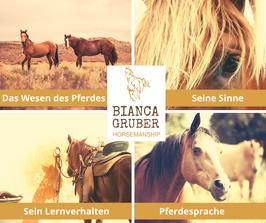 E-Books: Die Natur des Pferdes