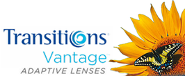 Eagle-Shades PLANO verglast mit Transitions Vantage