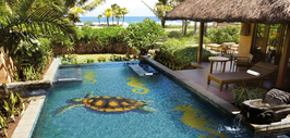 Pool Mosaik Turtle h10694 1.600x950mm