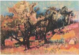 Schwarzenbach Armin, «Mallorca», (bereits verkauft)