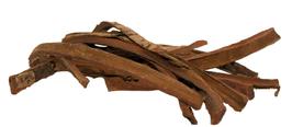 Seemandelbaumrinde