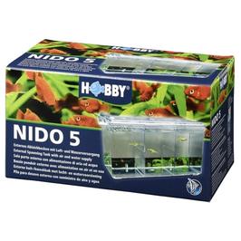 Aufzucht Nido5