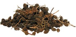 Erlenzapfen der Schwarzerle (Alnus glutinosa) 50g