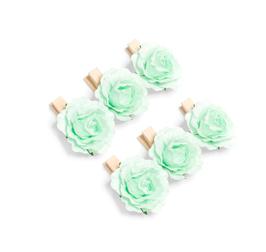 6 mini pinces bois avec roses vert menthe