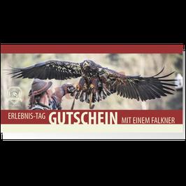 Gutschein Erlebnis-Tag mit einem Falkner