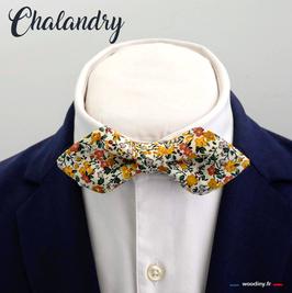 """Noeud papillon jaune """"Chalandry"""" - forme en pointe"""