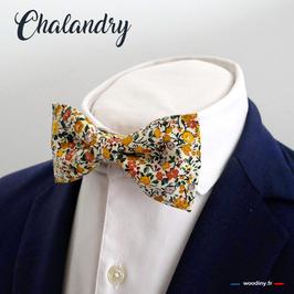 "Noeud papillon jaune ""Chalandry"""