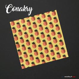 """Pochette de costume """"Conakry"""""""