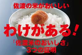 新潟|佐渡産コシヒカリ【玄米】5㎏|令和2年産