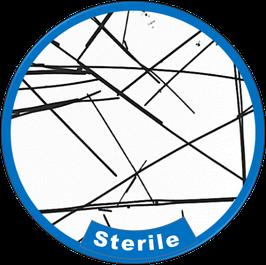 Ag Nanowires (Sterile)