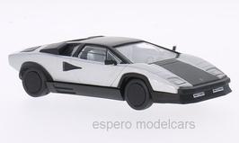 Lamborghini Countach Evoluzione 1987  silber / matt-schwarz
