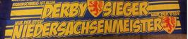 Braunschweig Derbysieger Seidenschal