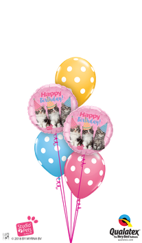 Ballons CLASSIC Petits Chats Bday