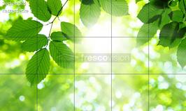 Deckenbild Produkt 1 für Rasterdecken/Systemdecken