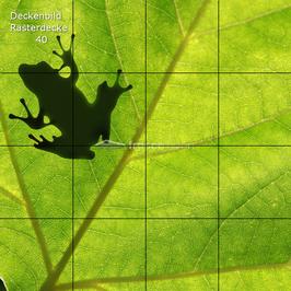Deckenbild 40 für Rasterdecken