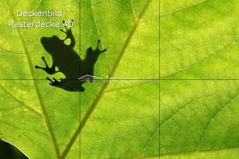 Deckenbild 40 für Rasterdecke