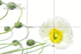 Deckenbild 20 für Rasterdecke