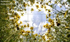 Deckenbild Produkt 19 für Rasterdecken/Systemdecken