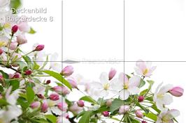 Deckenbild 8 für Rasterdecke