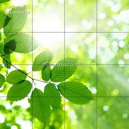 Deckenbild 1 für Rasterdecken