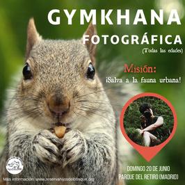 Gymkhana fotográfica (fauna) - Madrid