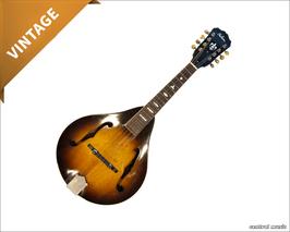 Gibson A-50 Mandoline