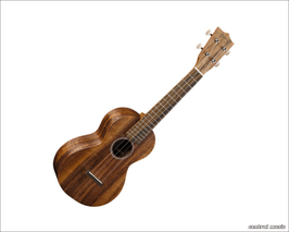 Martin Guitars C1K Concert