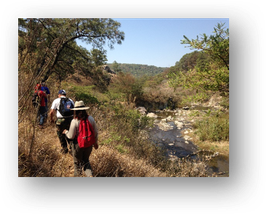 "Guided hike to ""la Primavera"" national park"