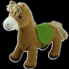 Pferd Stormy