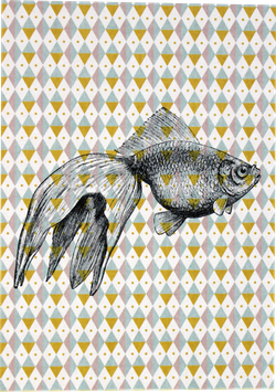 "Postcard ""Fish"""