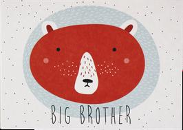 "Postcard Bear ""Big Brother"""