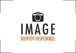 bloc compteur / compte tours daelim roadwin vj fi  version: injection